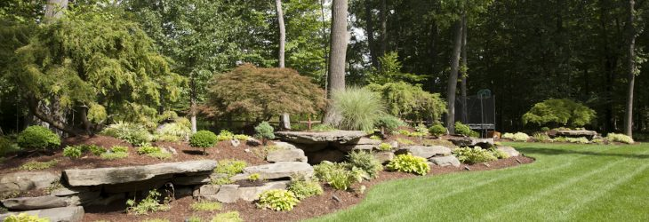 Main Image for Curti's Landscaping Should I Hire a Landscape Designer Page