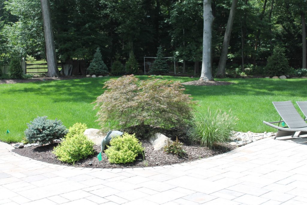 Landscape and Privacy Screen Design and Installation in Wyckoff NJ